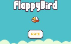 Flappy Bird craze takes flight with students
