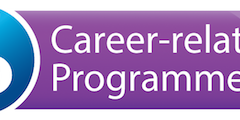What is the IB Career Certificate program?