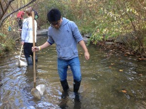 IB science students conduct 17 ecological tests on Snakeden Branch
