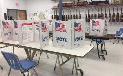 Everything on the Ballot in the Upcoming VA Election: Your Voting Guide