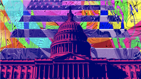 DC votes to decriminalize psychedelic drugs